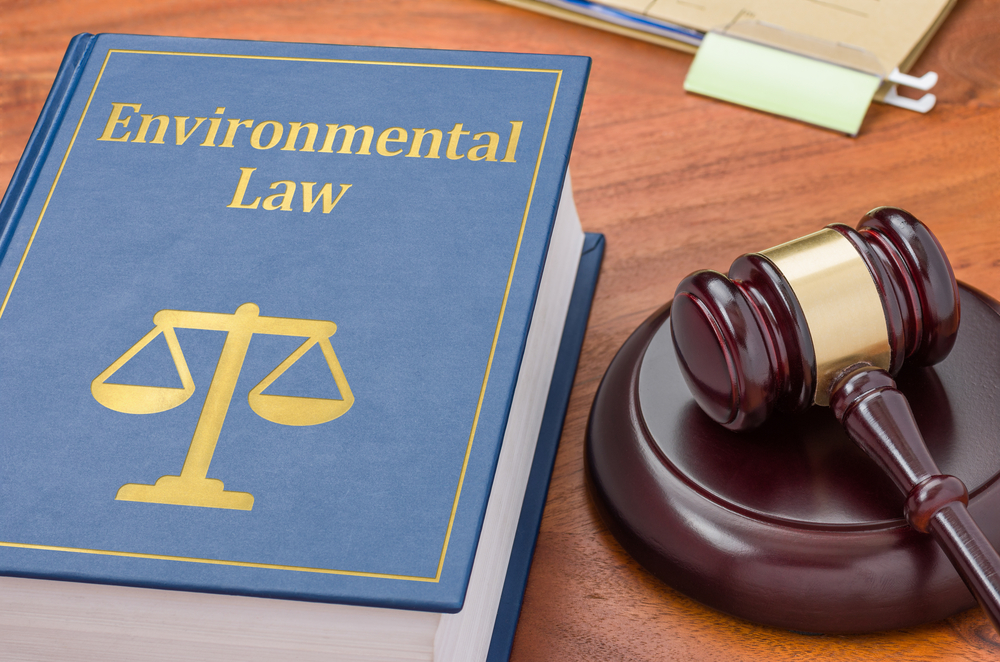 Environmental Laws in India and Maslow Hierarchy of Needs